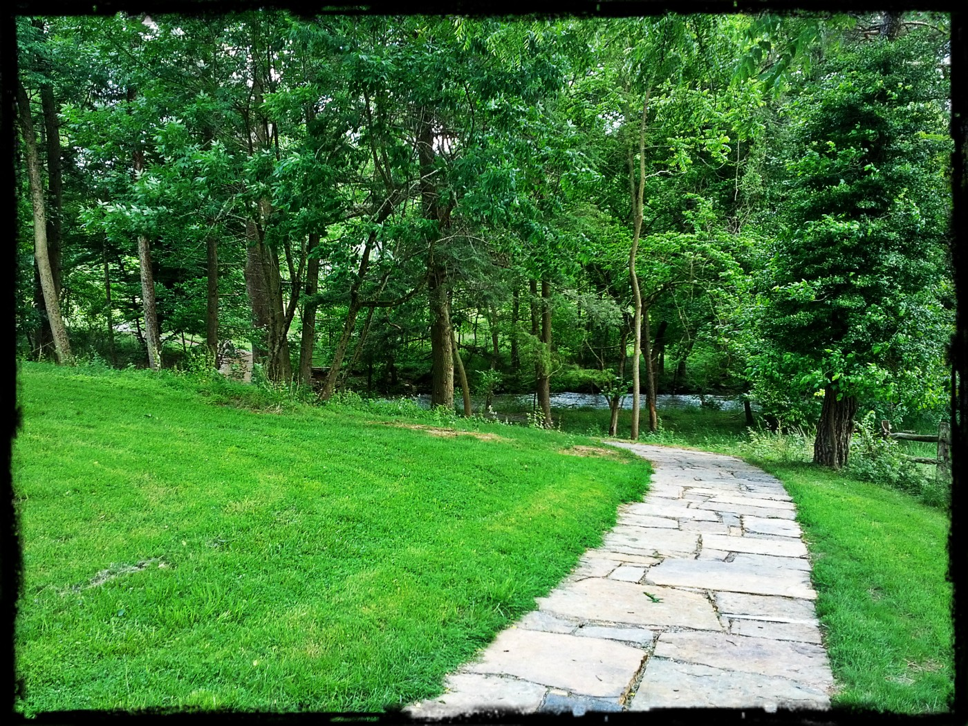 Walking path leading visitors' eyes