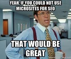 micrsites and seo meme