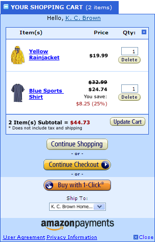 Amazon Checkout Page.